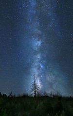 Directions to the Milky Way, Woodland Park, CO (KM Preston Photography) Tags: longexposure sky night stars nightscape outdoor clear nightshots nightsky skyscapes milkyway woodlandparkco kmprestonphotography 20160705021141c
