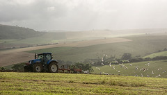 Chasing the Plough (Malcolm Bull) Tags: park tractor downs gulls south national include ploughing
