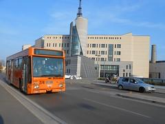 AIM n°274 in Via Gallo - linea 8 (AlebusITALIA) Tags: italy bus italia tram publictransport autobus vicenza veneto tpl trasporti mobilità trasportipubblici aimvicenza aimmobilità