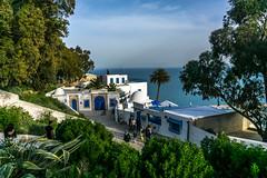 Tunis - Sidi Bou Said (RajiPV) Tags: street door blue sea white house tree beach window stone wall tunisia sony tunis palm dome said sidi bou paved a6000