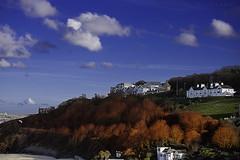 Redruth Costal Houses (Muzammil (Moz)) Tags: beach cornwall newquey afraaz muzammilhussain mozhaps canon5dmark3 mozhapsyahoocouk redruthcostalhouses