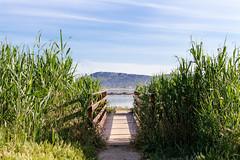 Pond & Landscape (Luigi Pirina) Tags: sardegna canon landscape eos pond colorful sardinia cagliari quartu eos100d canoneos100d
