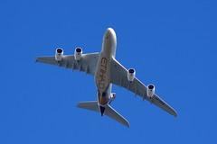 F-WWAB // Etihad Airways // A380-861 // MSN 170 // A6-APB (Martin Fester) Tags: 2 airplane aircraft hamburg airbus a380 msn runway etihadairways 170 finkenwerder edhi airbusindustrie xfw a380861 fwwab msn170 a6apb xfwedhi