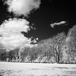 IR in the Yorkshire Wolds 2