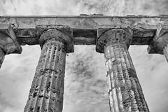 Selinunte : le Temple E (CpaKmoi) Tags: bw italia nb selinunte hera sicile sicila talie templee