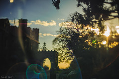A Castle and its Silhouette (Daniel A Ruiz) Tags: trees sunset sky sun ny newyork castle silhouette clouds 50mm bokeh branches mansion flares d700 freelensing