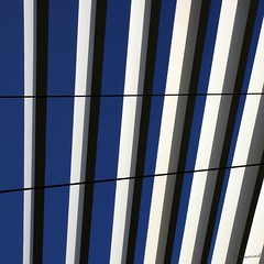 lines of colours (peperoniverdi) Tags: