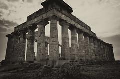 Selinunte : le Temple E (CpaKmoi) Tags: sepia italia italie selinunte hera sicile sicila templee