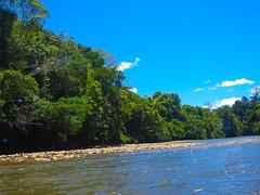 DSCN0693 (vhenryz) Tags: trees sky reflection water clouds forest river reserve jungle brunei seri begawan temburong