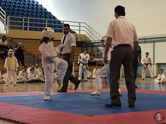 stefanou_15_5_2016_knockdown_207