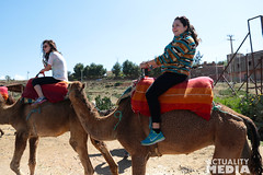 KS4A5194 (Actuality_Media) Tags: morocco maroc camels excursion studyabroad actualitymedia documentaryoutreach filmabroad