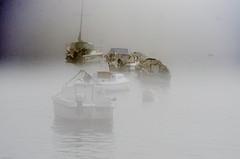 nulle part dans la brume (Harald Dugenet.) Tags: port bretagne bateau brouillard brume goulet atlantique boue coffre plouzan merdiroise radedebrest dellec portdudellec