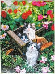 Kart O' Kittens (Keith Kimberlin) (Leonisha) Tags: flowers cat chat blumen kittens puzzle katze jigsawpuzzle ktzchen