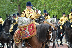 Heavy Metal (dhcomet) Tags: musician horse music london army drum royal parade bands mounted drummer british themall pageantry troopingthecolour massed
