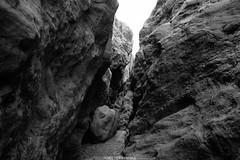 5R6K2644 (ATeshima) Tags: arizona nature havasu