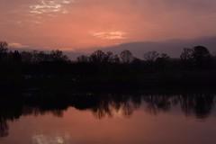 Sunrise on the Rhone (armct) Tags: pink red mist france reflection sunrise purple horizon hills riverbank treeline ardeche rhone viviers