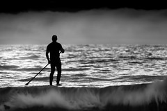 My heaven... (Deborah Kelland) Tags: sea newzealand white black beach surf paddle palm waiheke