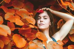 Le Cuivre (mathieustern) Tags: red portrait woman color vintage lens leaf sony a7ii trichrom trichromie