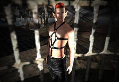 Dark Mood (niki wirefly) Tags: gay male landscape wings sl fantasy secondlife fairey niki fae