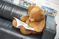 Customer (eskippyskip) Tags: comic funny laught justforlaughs joke fun teddy toy estate estateagent realestate sofa cuddly hot magazine reading