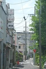 nagoya15430 (tanayan) Tags: road street urban japan town alley nikon cityscape nagoya   aichi j1