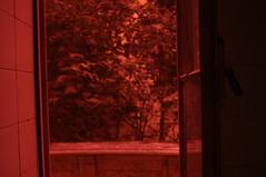 Vermelho enganador (Beatriz_Roveri) Tags: red by hospital made paulo sao por brasileiros matarazzo feito
