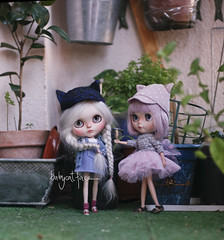"""""""I know you love that hair Dada, but mommy told us it's for a new sister, not for you"""" (_babycatface_) Tags: cute toy doll cutiepie blythe custom takara blythedoll dollphotography customblythe customdoll toyphotography blythecustom takaradoll babycatfacedollies babycatface"""