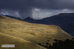 Rain Shaft from Trail Ridge~RMNP (Thomas Schoeller Photography) Tags: nature colorado denver thunderstorm rockymountains estespark nationalparks drama rockymountainnationalpark stormclouds trailridgeroad shadowandlight rockymountainfront outdoorphotography rainshaft prettynaturephotos naturefineart