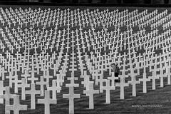 FLORENCE AMERICAN CEMETERY AND MEMORIAL !! (Roberto.mac.) Tags: bw cemetery italia campo firenze croci robertomac florenceamerican fantasiadelbw