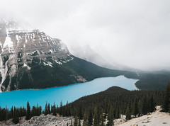 Peyto Lake (Alexander Tran | atranphoto.com) Tags: blue lake snow canada color landscape rockies turquoise lookout canadian alberta bow banff banffnationalpark glacial peyto atran atranphoto atranfoto