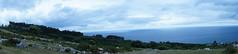 _DSC0835 (Parrasgo) Tags: espaa sunlight luz sol beach zoo mar spain seagull tiger iglesia playa rhino reflejo avestruz animales giraffe olas sunbeam vidriera cantabria norte horamagica