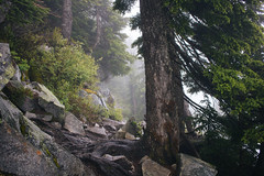 IMG_4064.jpg (Backpacking With Bacon) Tags: washington northerncascades hiking mtpilchuck granitefalls unitedstates us