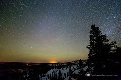 Night Sky Above Bryce Canyon (Free Roaming Photography) Tags: winter light sky usa mountain snow mountains southwest west tree silhouette pinetree pine night dark stars star utah nationalpark western northamerica tropic nightsky southernutah brycecanyon darksky lightpollution americansouthwest brycecanyonnationalpark coloradoplateau airglow