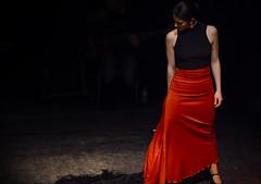 Flamenco (derrosenkavalier) Tags: dance danza flamenco