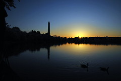 Tidal Basin at Dawn (Arantxata) Tags: washingtondc dc spring cherryblossoms 2015 arantxata