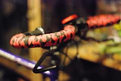 56cm Schwinn CrissCross (hamilton.pedrick) Tags: road classic bike vintage cycling tour cross steel frame schwinn crisscross touring 90s cyclocross tourer 4130 crmo cromoly chromoly