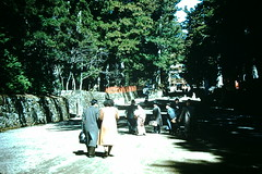 3-27-52- Road to Toshogu Shrine- Nikko- Japan (foundslides) Tags: irmalouisecarter irmalouiserudd asia nippon japanese pacific east orient oriental 1952 1950s tour tourists americantourist air travel vintage retro slides slide kodachrome kodak photography photos pics pix oldphotos oldpictures oldslides transparency transparencies colorslides film slidefilm slideshow culture irma lousie rudd irmarudd postwar japan ww2 wwii tokyo kyoto nikko travelling trip vacation holiday family traveller photographic outdoor landscape redborder foundslides johnrudd analog slidecollection