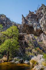 CO_Chapada0184 (Visit Brasil) Tags: travel brazil tourism nature horizontal brasil lago natureza unesco adventure rvore chapada cavalcante ecoturismo vegetao ecotourism semgente centrooeste penhascos diurna pontedepedra visitbrasil