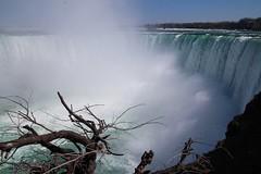 impressionante.... () Tags: canada niagrafalls chutes