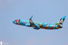 Alaska Airlines Boeing 737-990(WL) N318AS (Steven Weng) Tags: alaska canon la los airport angeles aircraft disney international boeing lax airlines 迪士尼 機場 飛機 n318as 彩繪機 客機 民航機 eos7d2 737990wl ef100400is2