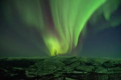Green Flame (Lee Petersen) Tags: winter snow alaska night aurora nightsky northernlights auroraborealis taiga borealforest angelrocks chenariverrecreationarea