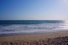 DSC04840 (deerhake.11) Tags: santamonica beach