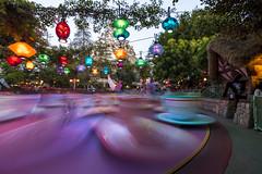 Disneyland Tea Cups (Squid Rings (John Burland)) Tags: blur long exposure ride tea disneyland disney cups