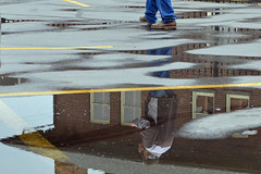 DSC_6683_disassociated state (futzr.fotoz) Tags: rainy day reflection walnut street firehouse yakima wa fractured disassociated disconnected state blue jeans eating peanuts gray jacket parking lot yellow stripes red brick fragmented broken window glass brown shoes