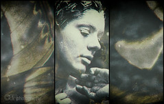 (OSR Photography) Tags: portrait blackandwhite bw sepia female butterfly dark triptych moody overlay trilogy