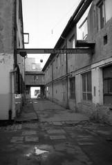 Minolta Hi-Matic G - Old Place where I Work (Kojotisko) Tags: bw brno creativecommons czechrepublic vx400 konicamonochromevx400 minoltahimaticg konicamonochrome