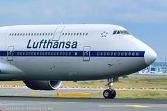 D-ABYT @FRA (thokaty) Tags: bangalore boeing lufthansa b747 fraport planespotting eddf blr startbahnwest lh754 b748 b7478 vobl retrolivery