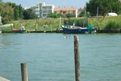 bricoe (Fabio.Buoso) Tags: gondole gara voga tradizione caorle mare canale