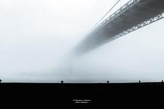 Misty Bridge (Explored) (Fredrik Lindedal) Tags: bridge bw blackandwhite sweden sverige gothenburg göteborg nikon photoart river mist morning fog depthoffield