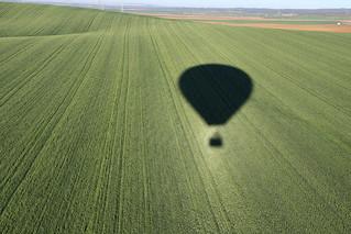 Sobrevolando campos de cereales - flying grain fields